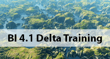 BO-4.1-Delta-Training-Updated