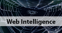 Web-Intelligence